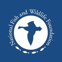 Friends of the assabet river national wildlife refuge for National fish and wildlife foundation